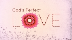 God Loves You Perfect