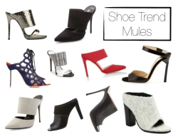 Shoe Trend Mules